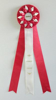 Judges' Choice Award